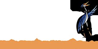 Holy City Arts & Lyric Opera